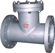 T型过滤器DN50碳钢壳